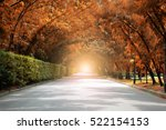 autumn fall road landscape | Shutterstock . vector #522154153