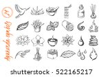 vector set of ayurvedical... | Shutterstock .eps vector #522165217