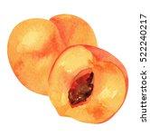 watercolor peach | Shutterstock . vector #522240217