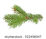 fir tree branch isolated on a... | Shutterstock . vector #522458347