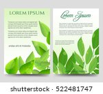 Spring Flyers Template Design...