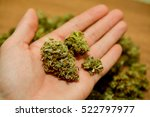 a handful of marijuana in a hand | Shutterstock . vector #522797977
