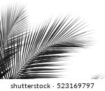 beautiful palms leaf on white... | Shutterstock . vector #523169797