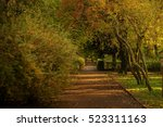 autumn park. the leaves in the... | Shutterstock . vector #523311163