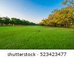 Central Public Park Green Gras...