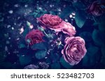 Stock photo roses in the garden vintage pastel 523482703