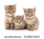 Stock photo three small kittens isolated on a white background 523837693