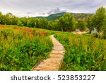Wooden Walkway To The Viewpoin...