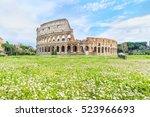 Chamomile Field At Piazza Di...