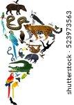 animals south america   vector... | Shutterstock .eps vector #523973563