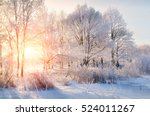 winter landscape   frosty trees ... | Shutterstock . vector #524011267