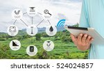 precision agriculture and... | Shutterstock . vector #524024857