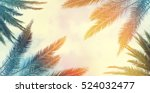 vintage palm background texture ... | Shutterstock . vector #524032477