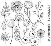 black on white flower graphic... | Shutterstock .eps vector #524083237