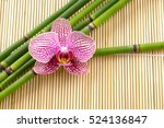 Orchid And Bamboo Grove And Ma...