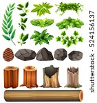 Different Types Of Leaves And...