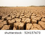 global warming concept. dead... | Shutterstock . vector #524157673