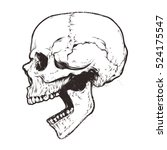 anatomic skull vector art.... | Shutterstock .eps vector #524175547