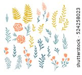 vector floral elements  in... | Shutterstock .eps vector #524258023