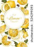 vector lemon vertical banner.... | Shutterstock .eps vector #524299393