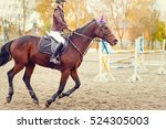 Stock photo young jockey girl riding horse on show jumping competition 524305003