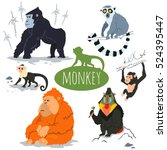 Monkey Character Vector Set....