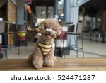 Smiling Toy Poodle Sitting On...