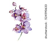 Watercolor Orchid Bouquet...