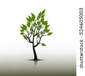 tree icon with reflection on...   Shutterstock .eps vector #524605003