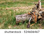 hunting items. hunting concept. ... | Shutterstock . vector #524606467