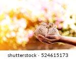 women hands hold a money bags... | Shutterstock . vector #524615173