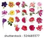 Stock photo big set of watercolor flowers hand drawn botanical illustration rose peony petunia orchid 524685577