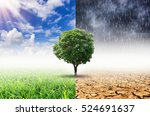 plants and climate change with... | Shutterstock . vector #524691637