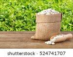 butter beans or lima beans in... | Shutterstock . vector #524741707