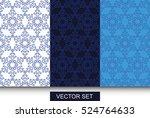 vector. set of stylish winter... | Shutterstock .eps vector #524764633