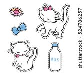cute stickers set collections... | Shutterstock .eps vector #524786257