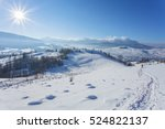 Winter Landscape With Lots Of...