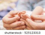little infant newborn child in... | Shutterstock . vector #525123313