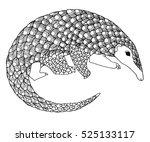 zentangle pangolin   unusual... | Shutterstock .eps vector #525133117