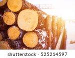 pile of wood logs. wood logs...   Shutterstock . vector #525214597