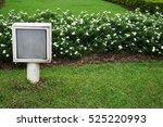 lantern light on grass in the... | Shutterstock . vector #525220993