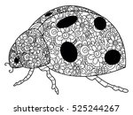 coccinellidae coloring book for ... | Shutterstock .eps vector #525244267