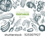 vegetables top view frame.... | Shutterstock .eps vector #525307927