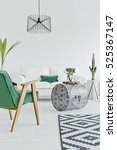 light home interior with green... | Shutterstock . vector #525367147
