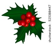 holly berry  christmas berries... | Shutterstock .eps vector #525388447