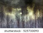 overcast day  atmosphere of... | Shutterstock . vector #525733093