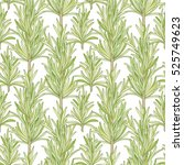 vector hand drawn pattern with... | Shutterstock .eps vector #525749623