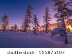 Winter Landscape. Sunset