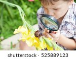 happy little boy playing in the ... | Shutterstock . vector #525889123