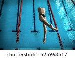Swimmer Man. Swimmings Athlete...